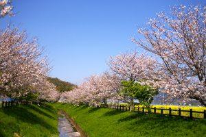 「出会いの春」の第一印象を明るく♪<br>春色バッグ新調のススメ!