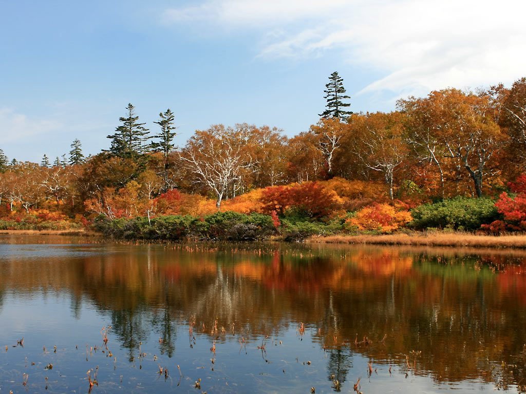 紅葉狩りやハイキング…秋のお出かけ&旅行カバン特集 Part2~ハンズフリーバッグ編~